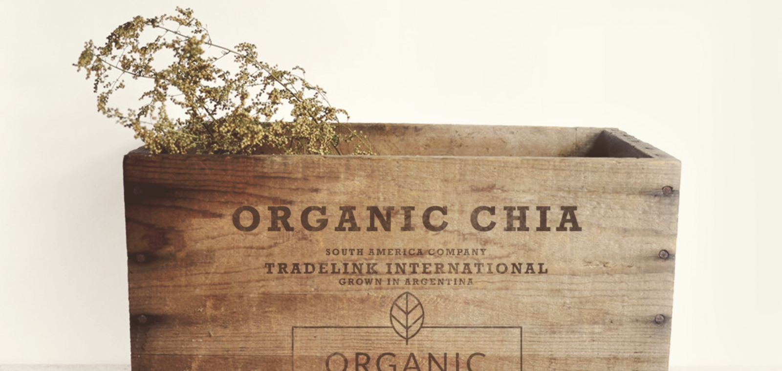 Chia Wooden Box_banner