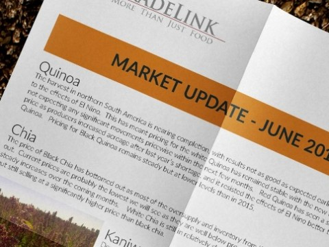 market-update-june-2016_lr