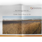 Chia from Argentina – Brochure
