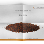 Introduction to Kaniwa