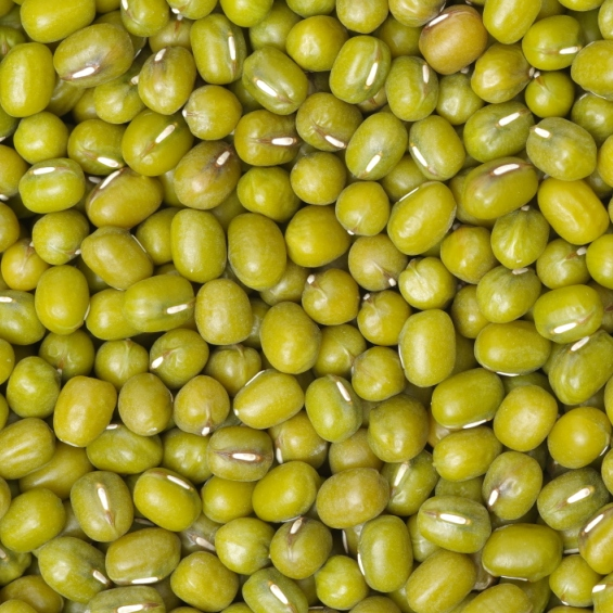 mung beans from Argentina